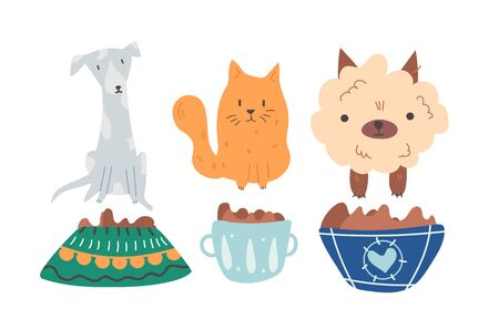 Group of cute, adorable and hungry dogs and cats are sitting near the plates full of dry pet food waiting for adoption by loving owner. Vector cartoon flat illustration on white background