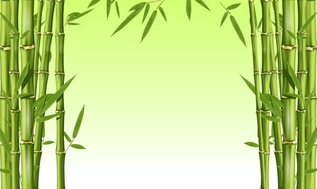 Cadre en bambou avec espace vide - tiges de bambou vert avec feuilles, arrière-plan