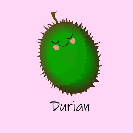 Durian Fruit funny characters for educating children. The card is beautiful and bright. Healthy food. Illustration