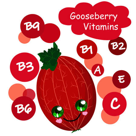 gooseberry character. The benefits of berries Healthy food. Vitamins and minerals