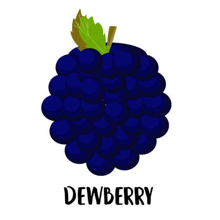Illustration of cute staring dewberry mascot isolated on light background. Flat design style for your mascot branding.