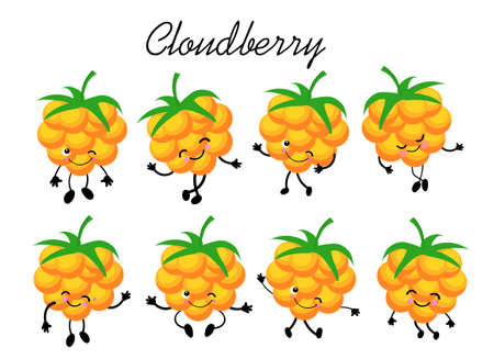 cloudberry berry collection on a white background. Logo for berry production company Stock Illustratie