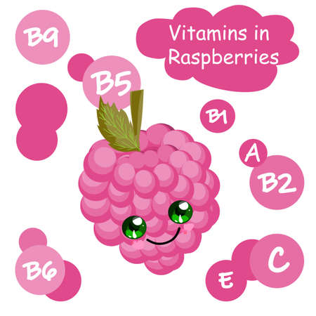 Cute cartoon fruit character. Vitamins in the berries. Raspberry. Childrens illustration.. Stock Illustratie