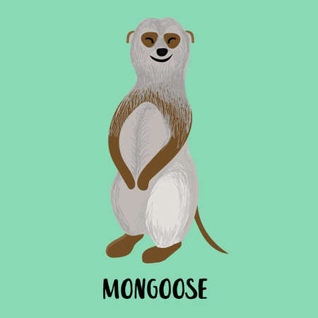 Cute cartoon character Meerkat, Mongoose. Children's illustration.