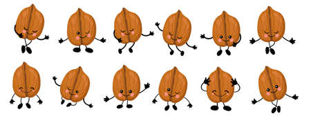 Walnut. a large set of Cute Nuts characters with hands and eyes. Cartoon fruit or vegetable. Useful vegan food. Isolated on white background.
