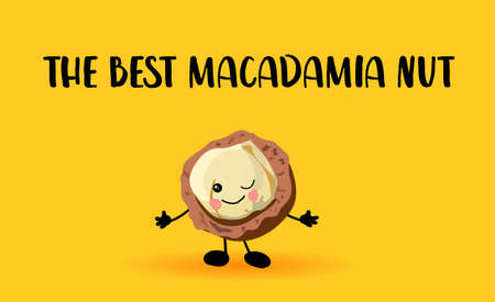 Macadamia nut character. Lovely wholesome food. Proteins and vegetarianism.. Ilustração
