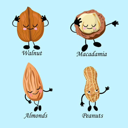 Character set of peanuts, almonds, macadamia and walnuts. Vegan food.. Ilustração