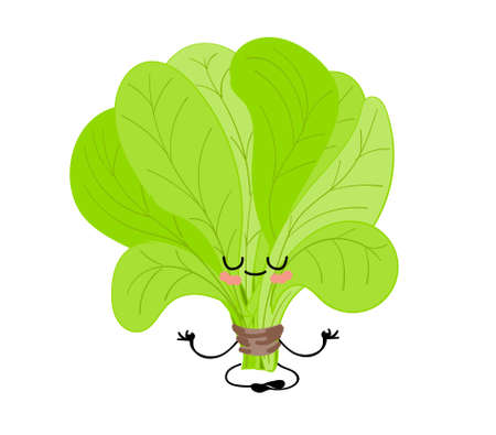 International spinach day. sorrel. Greens. Cheerful cute cartoon spinach character with eyes and hands.