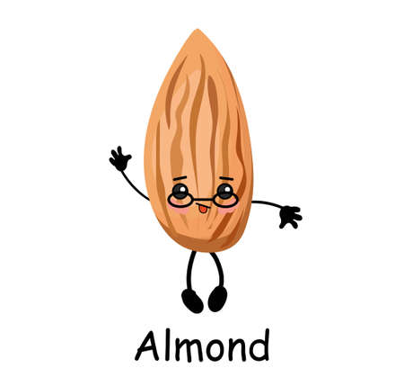 Almond nut character with hands and face. Useful food. Protein.