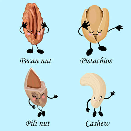collection of nuts characters. Healthy foods. Vegetarianism and healthy food. Cashews, pistachios, pecans. Stockfoto