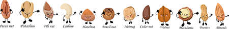 Large set of nuts characters. Hands and feet, eyes. Useful and fresh food. Vegetarianism and vegans