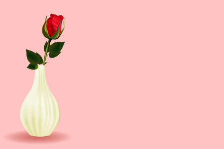 Background for postcards. Women's Day. Red rose in a vase. White ceramics. Valentine's Day. Promotional banner or poster for discounts and promotions. Place for text.