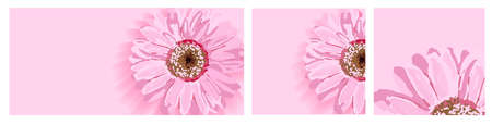 Set of backgrounds with spring flowers. Format story, banner . Pink flower. Background to insert text. Greeting cover design for Womens Day or Valentines Day. Greeting card, flyer