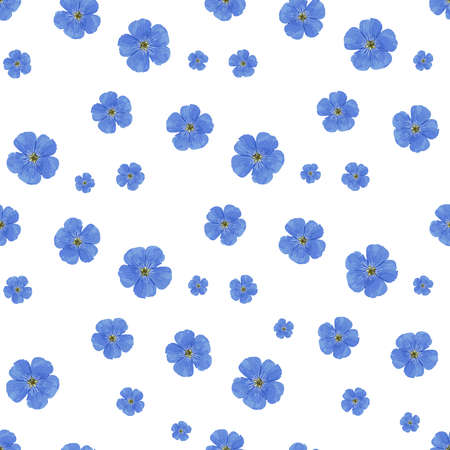 SEAMLESS VECTOR FLOWER PATTERN. White background. Spring bright colors. blue. Perfect design for textile and wrapping paper. Flax flowers.