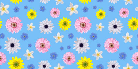 SEAMLESS VECTOR FLOWER PATTERN. Realistic flowers. Spring bright colors. Perfect textile and wrapping paper design. Gerbera, anemone, linen. Stock Photo