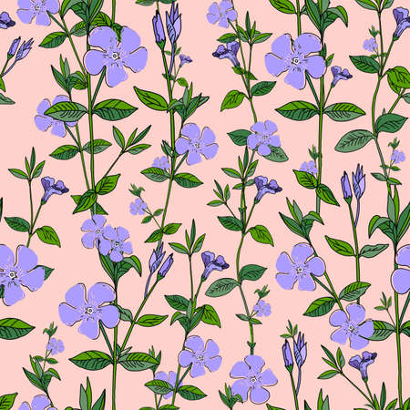 Purple flowers on a pink background. Periwinkle. Seamless summer pattern. Ilustrace