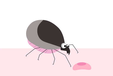 Bug, tick. blood-sucking parasite. Insect pest. Tick character vector illustration