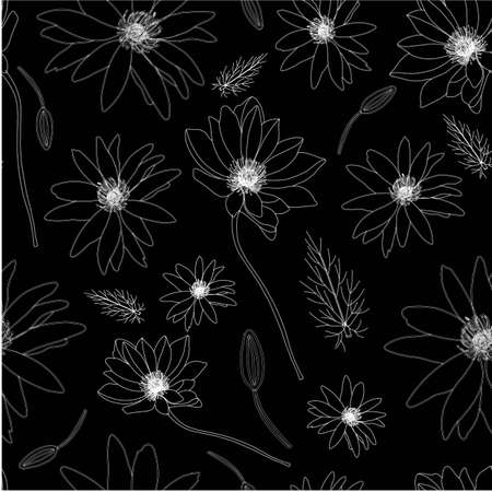 vector illustration. Botanical illustration