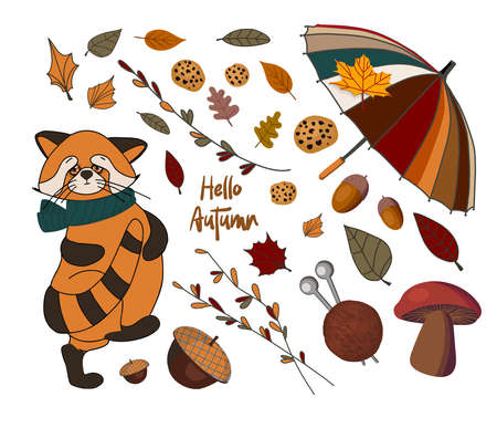 Vector set of autumn icons: red panda, falling leaves, cozy food, nuts, mushrooms and pumpkin. Scrapbook collection of autumn season elements. Bright set for harvesting. Autumn stickers.