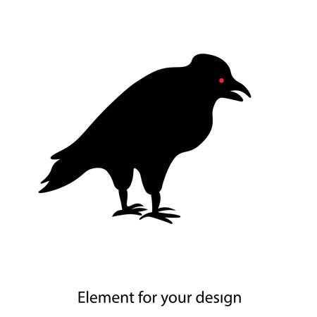 Black Raven. Postal bird. Raven isolated on white background.