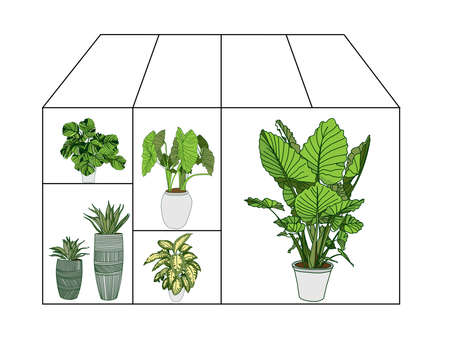 Flower greenhouse or greenhouse. Winter Garden. Gardening and truck farming concept.