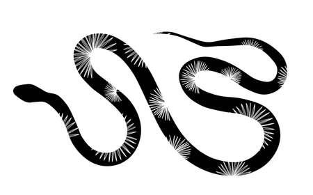 Tropical sea snake isolated on white background. Snake skin. Reptile. Vector illustration.