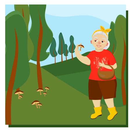 An elderly woman picks mushrooms in the forest. Mushroomer. Mushroom picking. Leisure of pensioners. Vector illustration