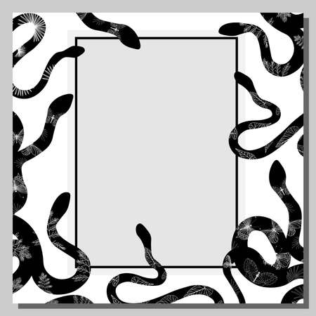 Snake. The background is white with black snakes. Frame. Exotic reptiles. Vector illustration