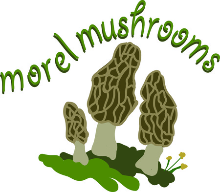 This is a great design for the mushroom lover.