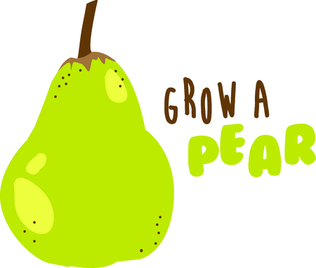 Sweet, delicious and rich flavored pears offer crunchiness of apples yet juicy as peach and nectarine