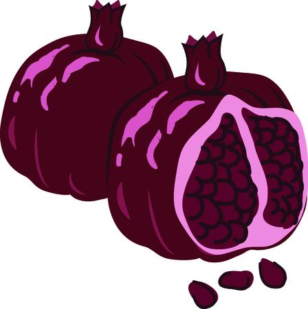 과일 프로젝트에이 석류를 사용하십시오. 일러스트