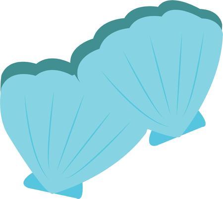 Dekorieren Strand tragen mit hübschen Seashells. Standard-Bild - 44834746