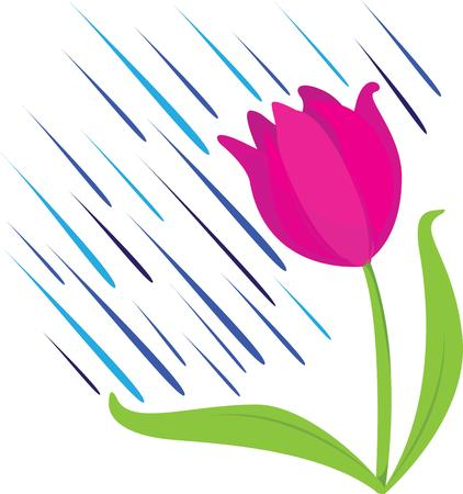 accent: Accent your garden project with beautiful tulips. Illustration