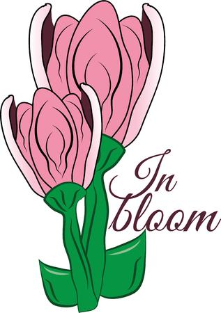 floret: Beautiful flowers are prefect on any project. Illustration