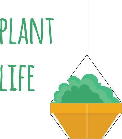 꽤 매달려있는 식물로 장식하십시오. 일러스트