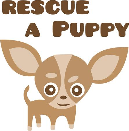 Dog lovers will enjoy a cute puppy.