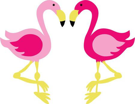 fowls: Pretty flamingos will look great on any project.