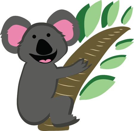 marsupial: A koala is a cuddly animal for a t-shirt.