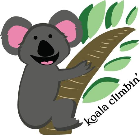aussie: A koala is a cuddly animal for a t-shirt.
