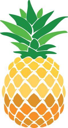 Verwenden Sie eine Ananas als Küchendekoration oder ein Symbol der Gastfreundschaft. Standard-Bild - 44887156