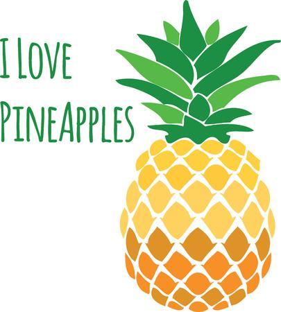 Gebruik een ananas als een keuken decoratie of een symbool van gastvrijheid. Stock Illustratie