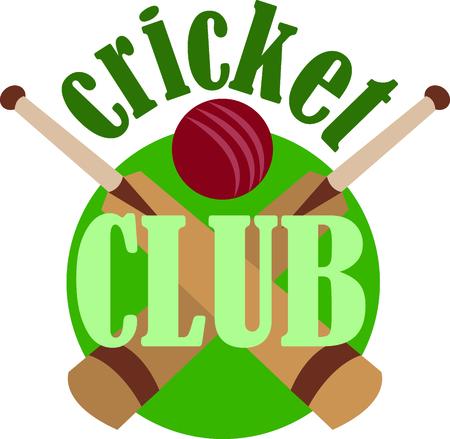 wicket: Sports fans will love a cricket design.