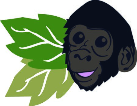 Get this mountain gorilla for your next design to remind you of the vacation to the zoo. Çizim