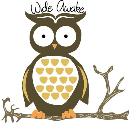 hoot: A cute owl is a wonderful nature project. Illustration