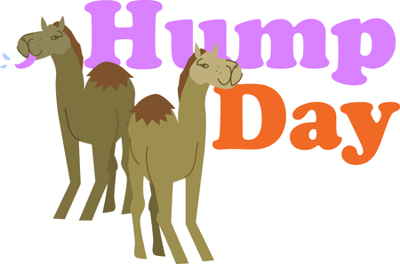 hump: Animal lovers will enjoy this camel design.