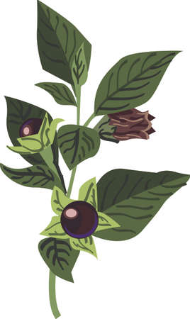 tiers: Berries are an all time favorite when it comes to kitchen decor.  This design will be perfect on window tiers, kitchen mats, wall decor, wall plaques and more. Illustration