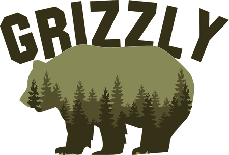 home addition: This majestic grizzly will make a stunning addition to any home decor or as a perfect gift for the wildlife lover!