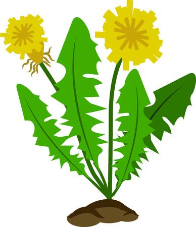 Kunt u het zonnige kleine paardenbloem hoofden verschijnen? Markeren de komst van de lente met dit ontwerp op keukenlinnen, placemats, omlijst borduren en nog veel meer! Stock Illustratie