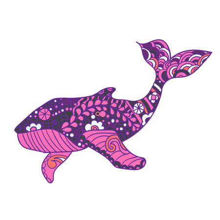 Whale, Vector print, adult coloring page. Hand drawn artistically, ornamental patterned Whale illustration. Sea Animal collection, t-shirt design.