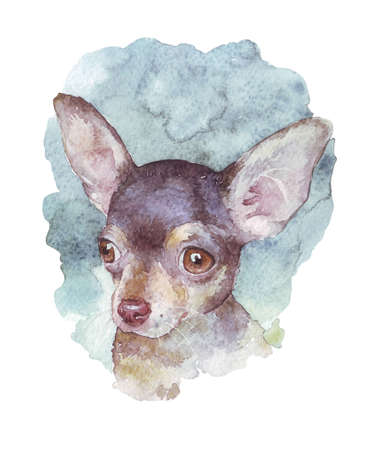 Russian Toy Terrier watercolor illustration Stock Photo
